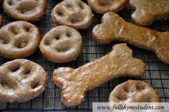 homemade_dog_treats