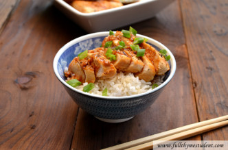 chicken_teriyaki_wm_main